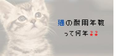 猫の勘定科目と法定耐用年数って何??【猫カフェ、看板猫、社内ペットetc】